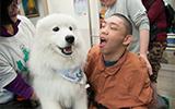 遇見狗醫生 歡笑樂滿堂