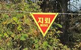 南北韓軍事地雷 歷時489年才能清除
