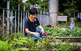 綠手指教保員 透過園藝療癒住民(上)