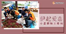 「伊起愛嘉-小農體驗工作營」現正招募中!